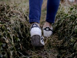 Feet walking in a field
