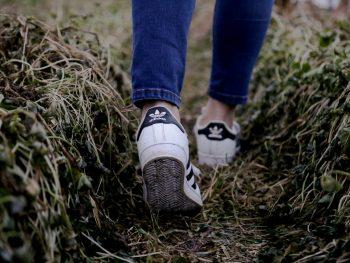 Feet walking in a field